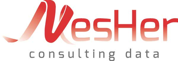 Mesher Consulting Data